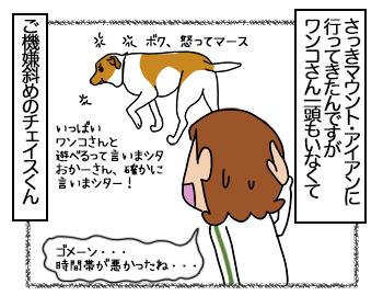 03072017_dog1mini.jpg