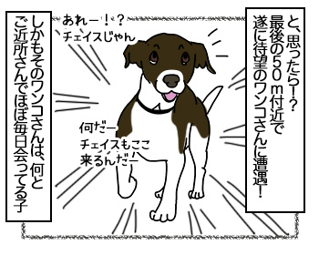 03072017_dog2mini.jpg