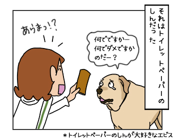 06062017_dog3mini.jpg