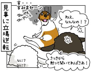 13062017_dog4mini.jpg