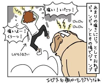 15052017_dog3mini.jpg