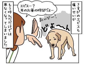 16052017_dog1mini.jpg