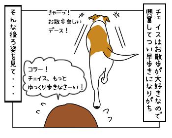 16062017_dog3mini.jpg