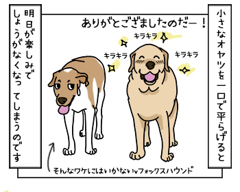17052017_dog5mini.jpg