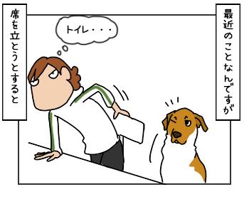 18052017_dog1mini.jpg