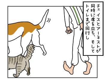 18052017_dog2mini.jpg