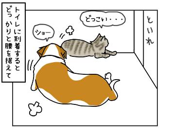 18052017_dog3mini.jpg