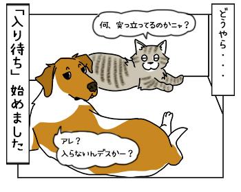 18052017_dog4mini.jpg