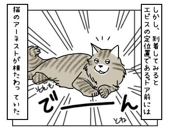 19052017_dog3mini.jpg