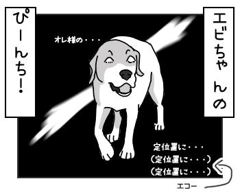 19052017_dog5mini.jpg