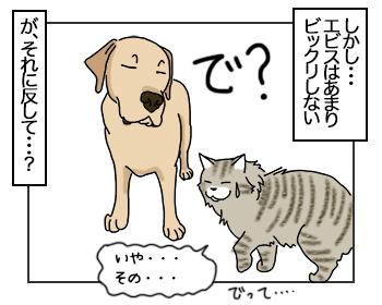 21062017_dog2mini.jpg