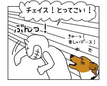 22052017_dog1mini.jpg