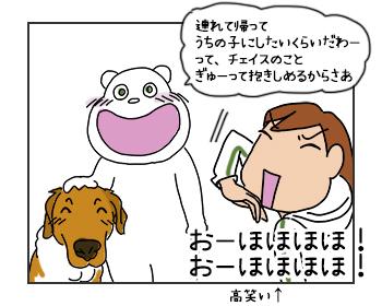 22062017_dog3mini.jpg