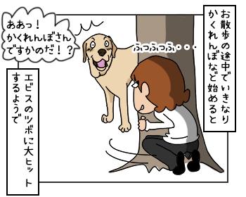 23052017_dog1mini.jpg