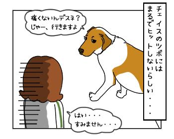 23052017_dog5mini.jpg