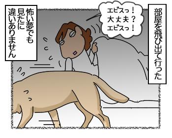 23062017_dog3mini.jpg