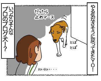 26062017_dog4mini.jpg