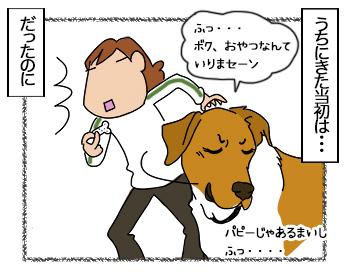 27062017_dog1mini.jpg