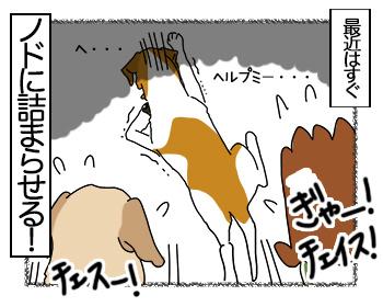 27062017_dog4mini.jpg