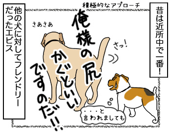 29062017_dog1mini.jpg