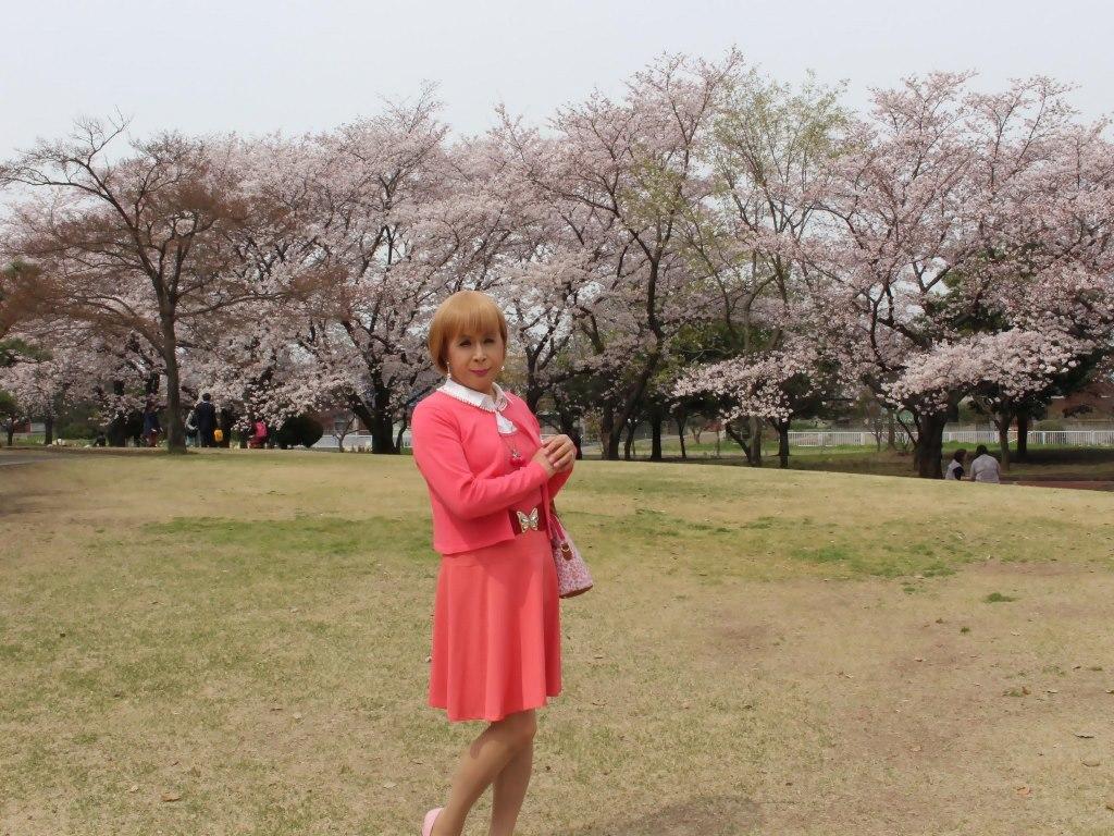 オレンジスカートカーデ桜A(3)