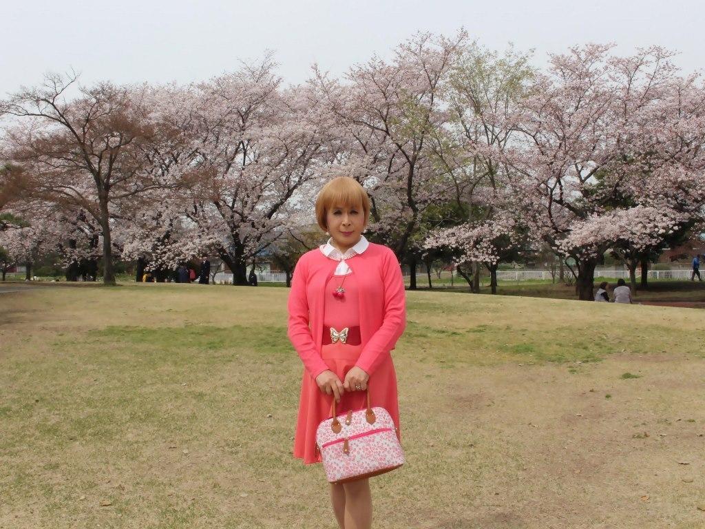 オレンジスカートカーデ桜A(2)