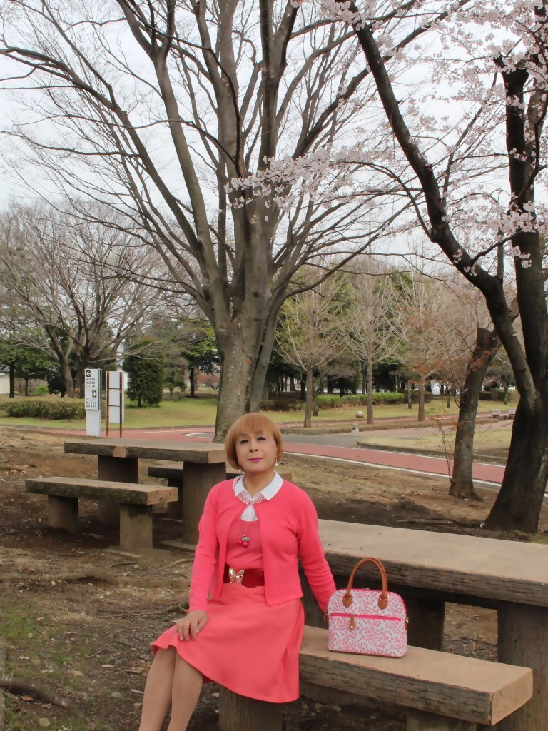オレンジスカートカーデ桜B(1)
