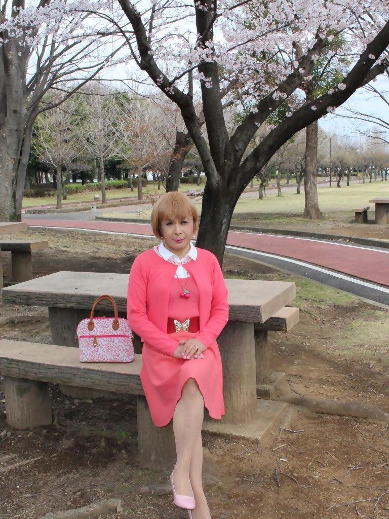 オレンジスカートカーデ桜B(2)