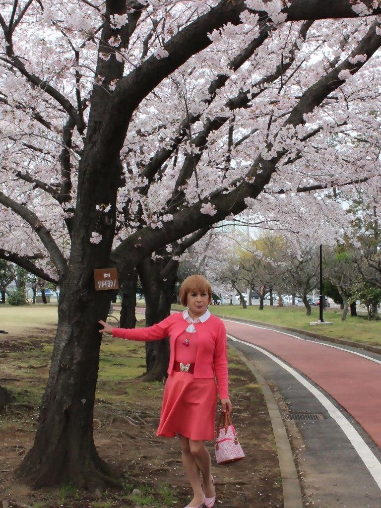 オレンジスカートカーデ桜B(4)