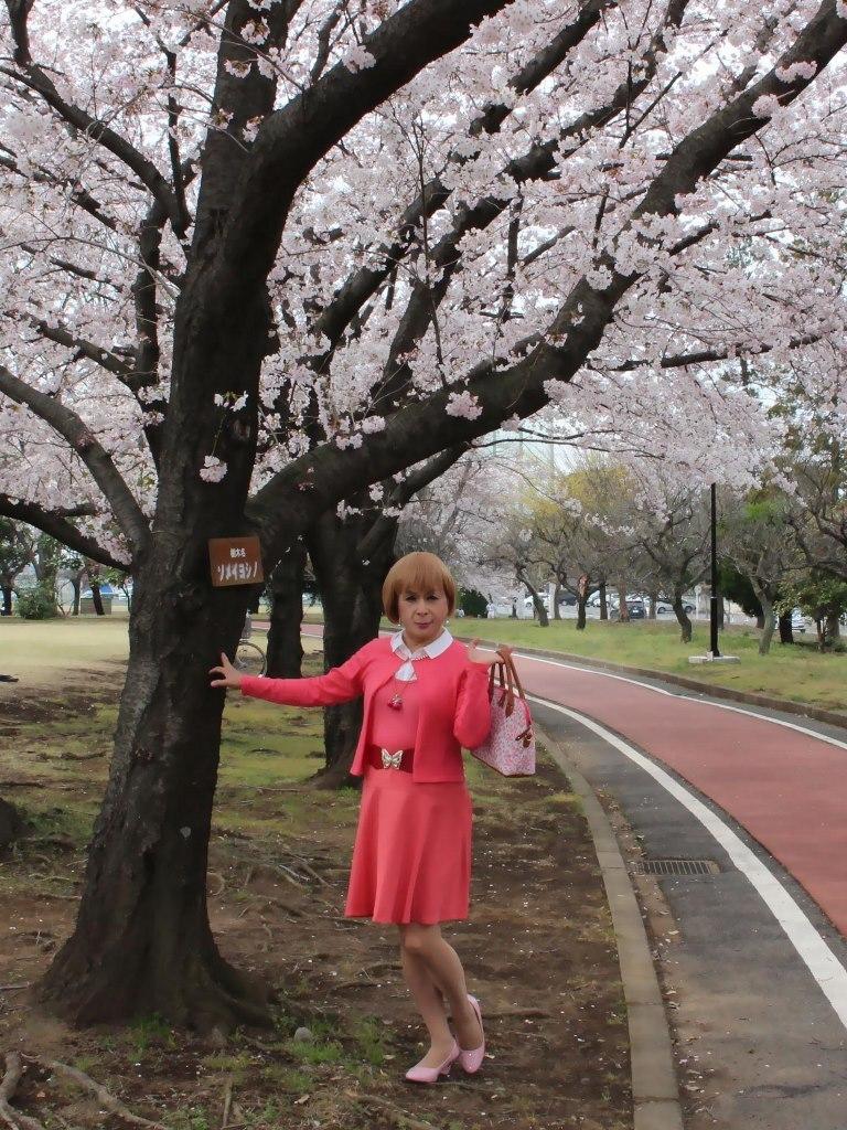 オレンジスカートカーデ桜B(5)