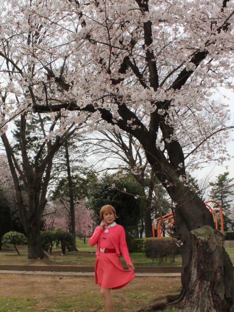 オレンジスカートカーデ桜C(1)