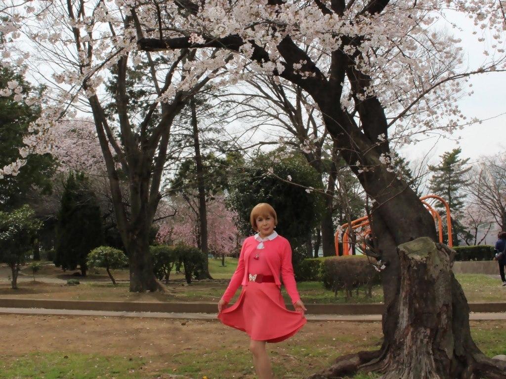 オレンジスカートカーデ桜C(2)