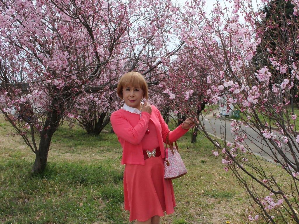オレンジスカートカーデ桜C(4)