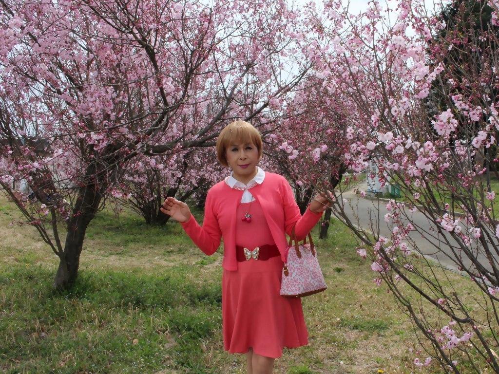 オレンジスカートカーデ桜C(3)