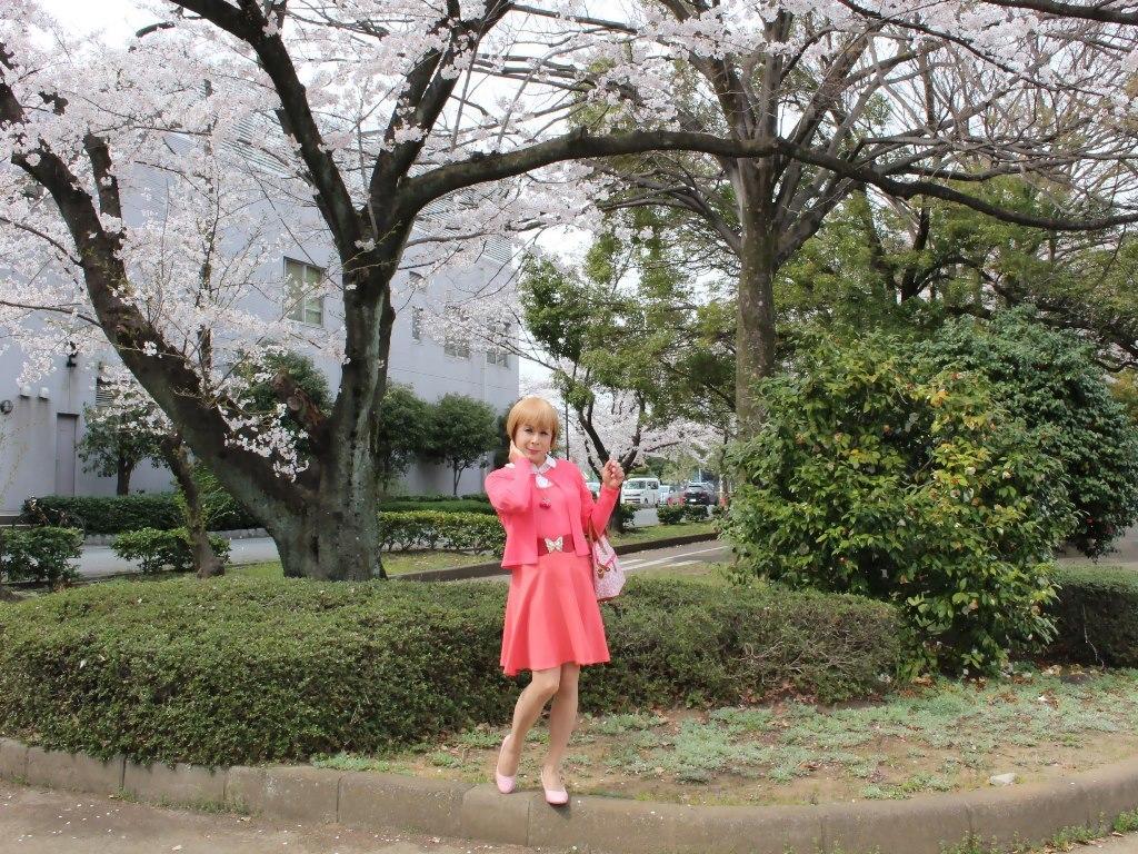 オレンジスカートカーデ桜D(4)