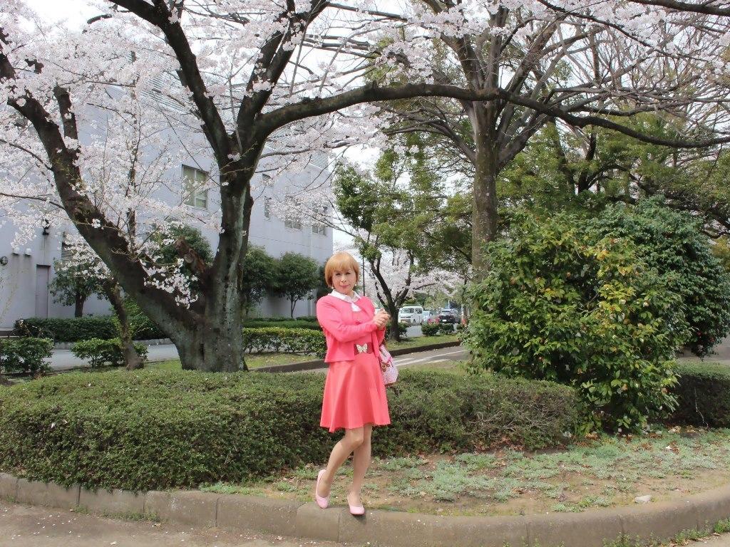 オレンジスカートカーデ桜D(5)