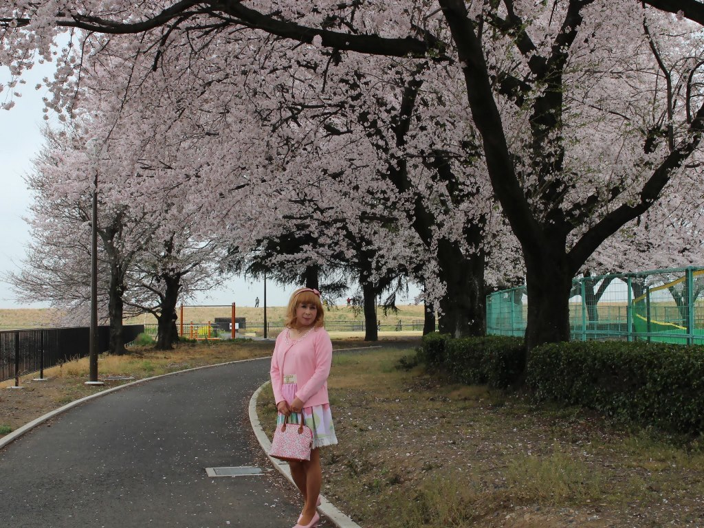 桜とピンクカーデA(2)