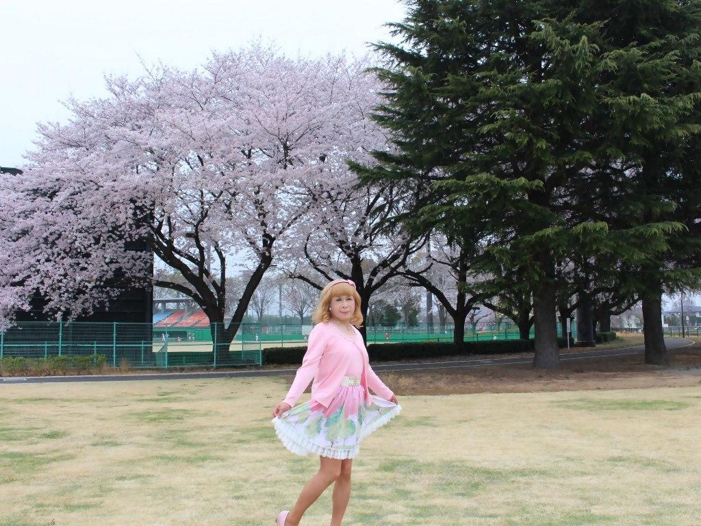 桜とピンクカーデB(2)