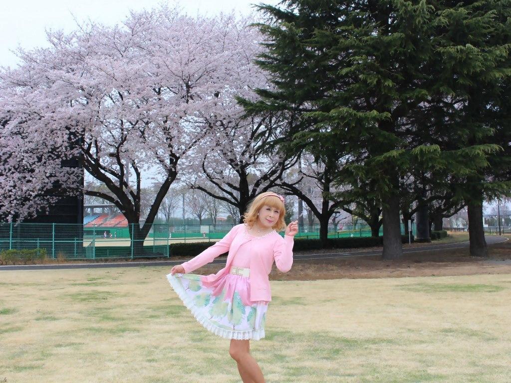 桜とピンクカーデB(3)