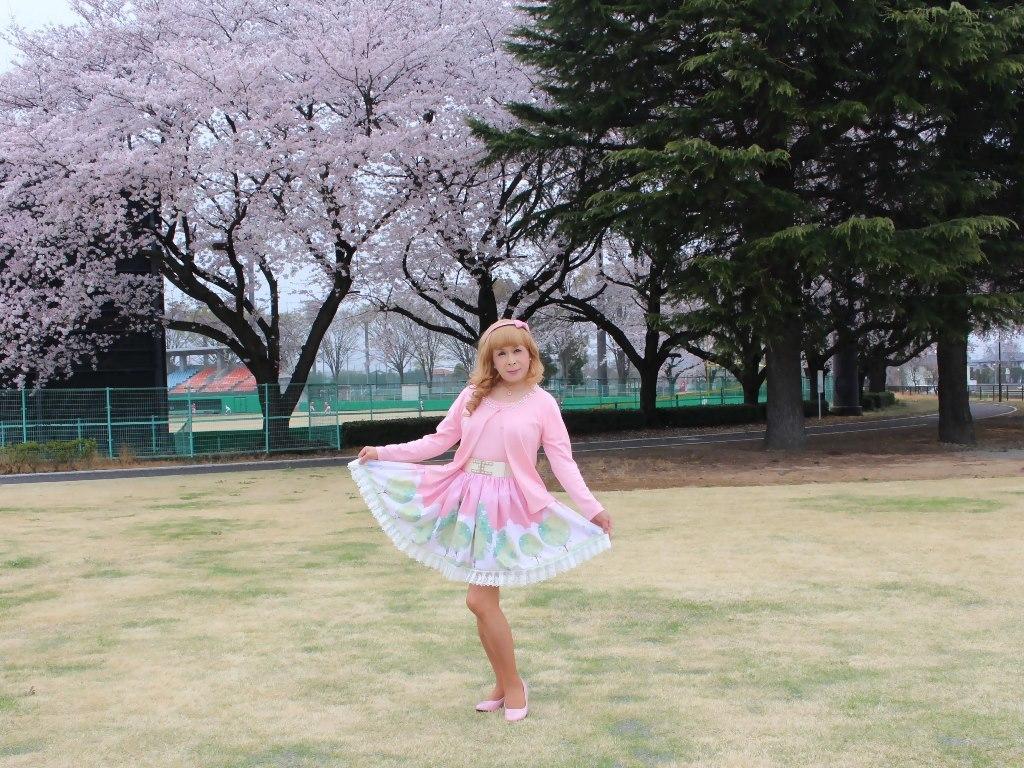 桜とピンクカーデB(6)