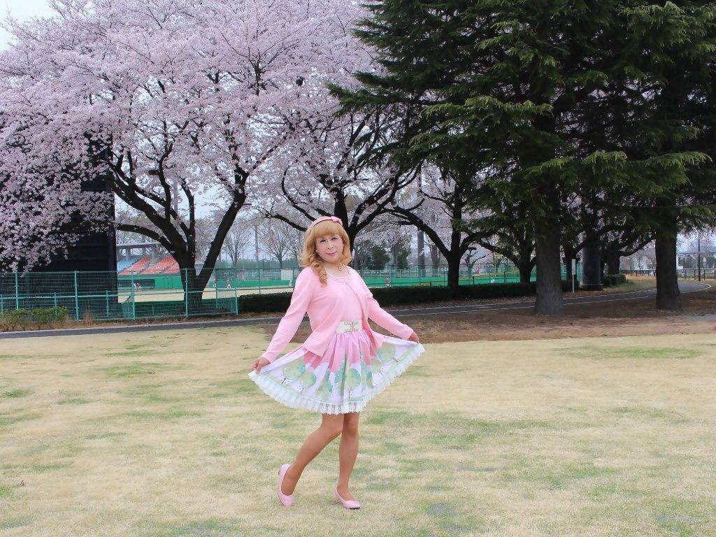 桜とピンクカーデB(7)