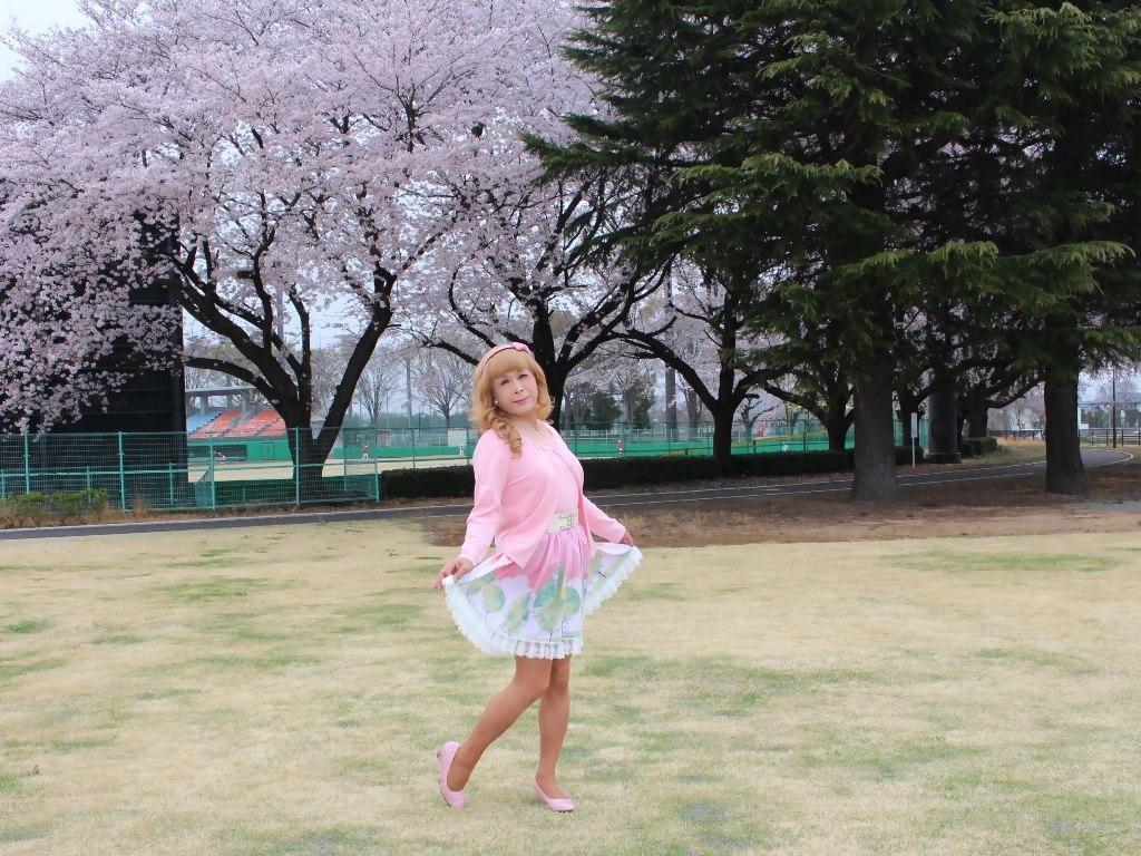 桜とピンクカーデB(8)