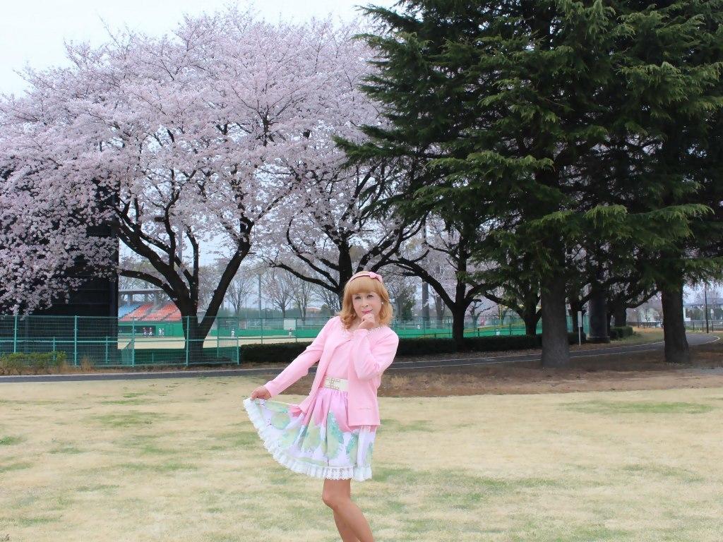 桜とピンクカーデB(4)