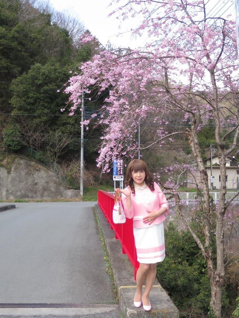 ピンスーツ温泉前A(5)