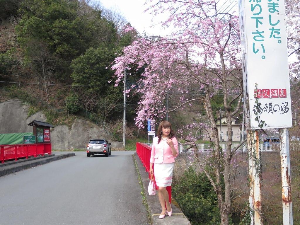 ピンスーツ温泉前A(6)