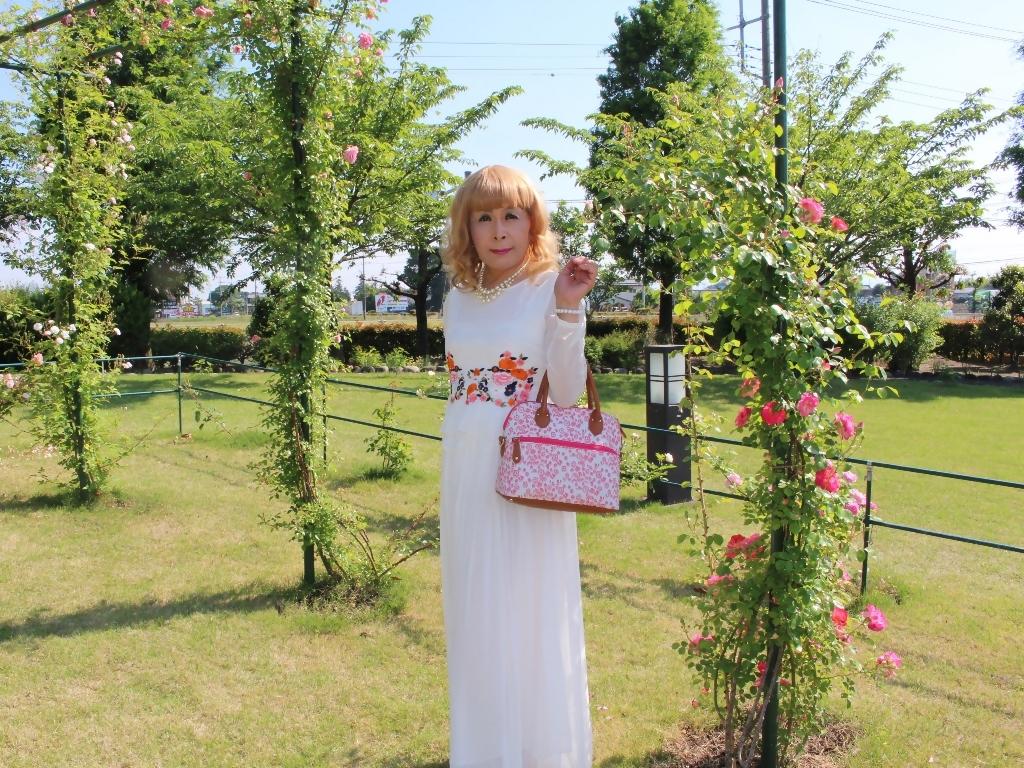 白ドレスバラ園G(5)