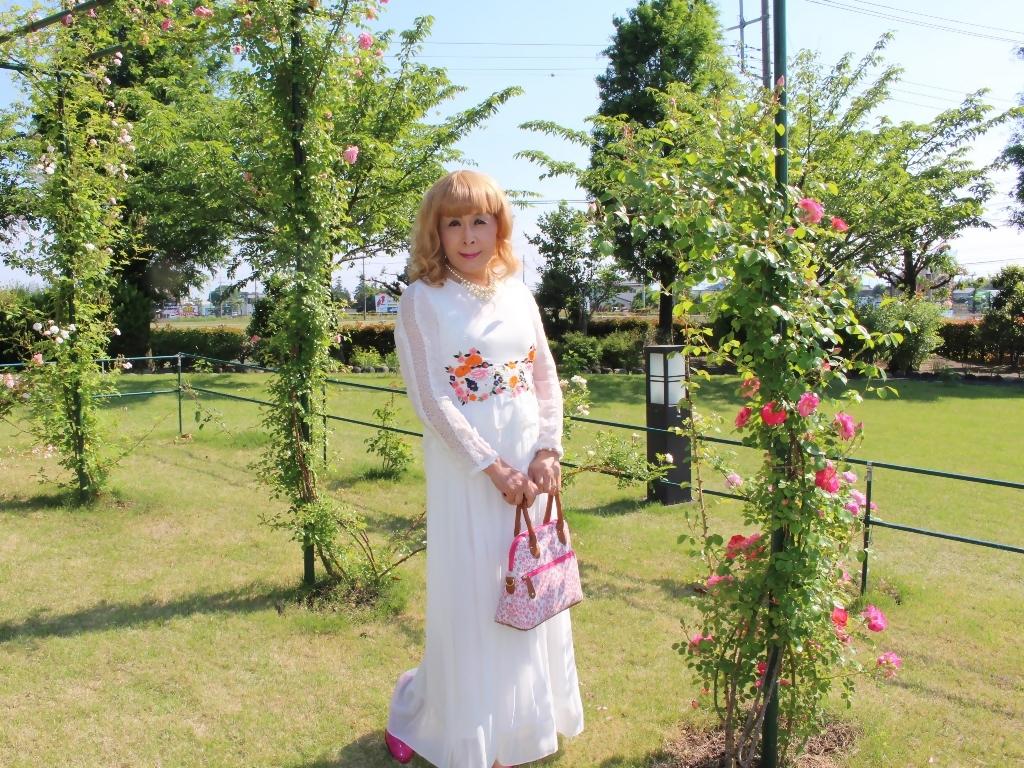 白ドレスバラ園G(6)