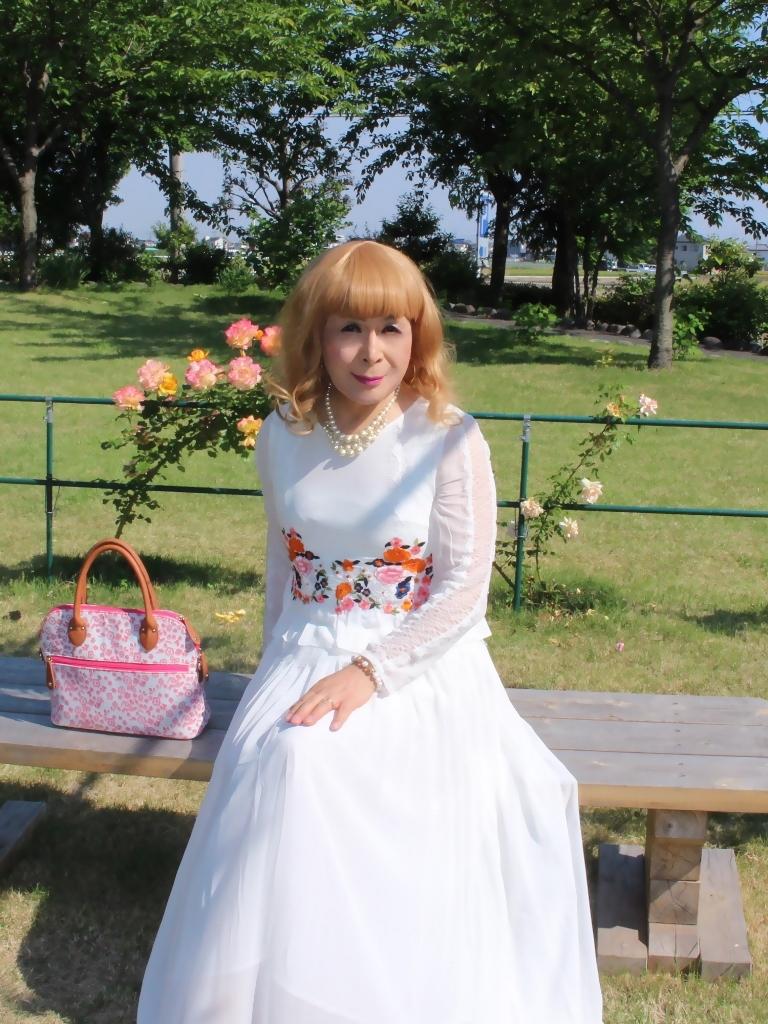 白ドレスバラ園G(1)