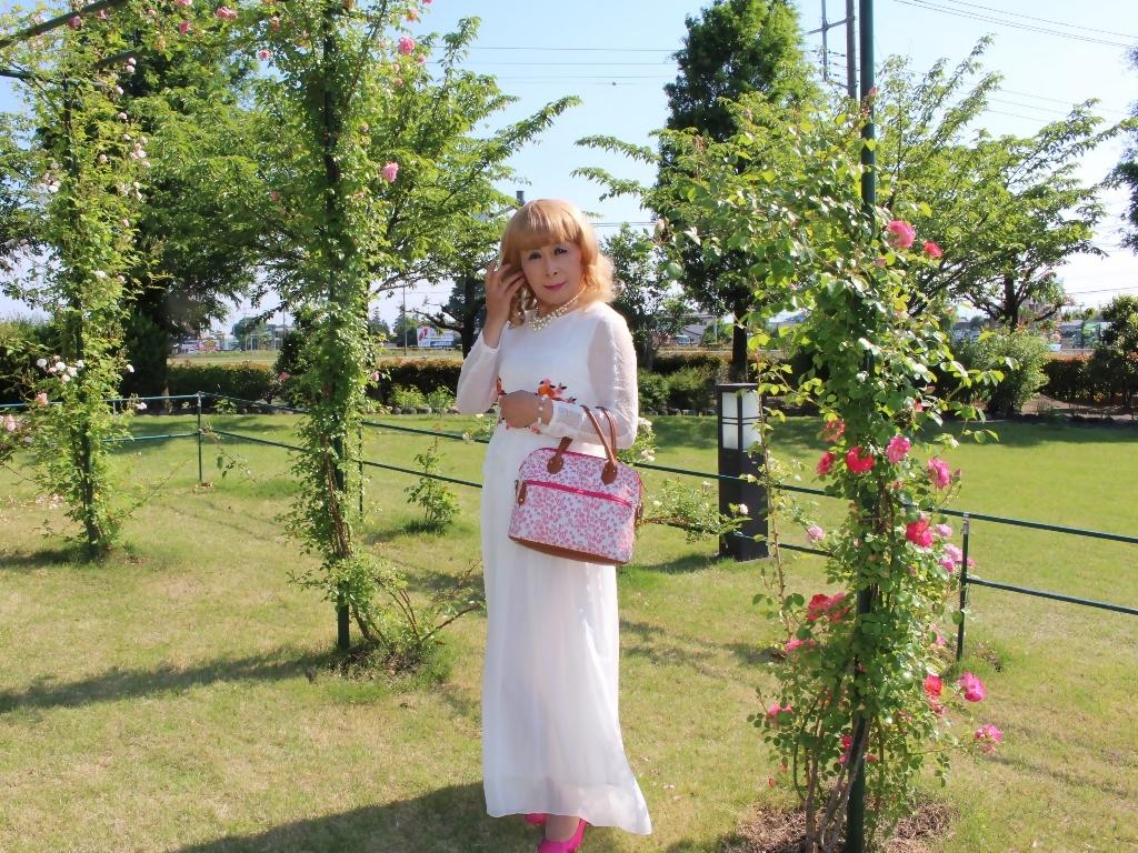 白ドレスバラ園G(7)
