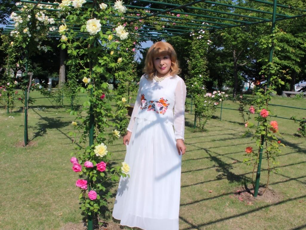 白ドレスバラ園G(8)